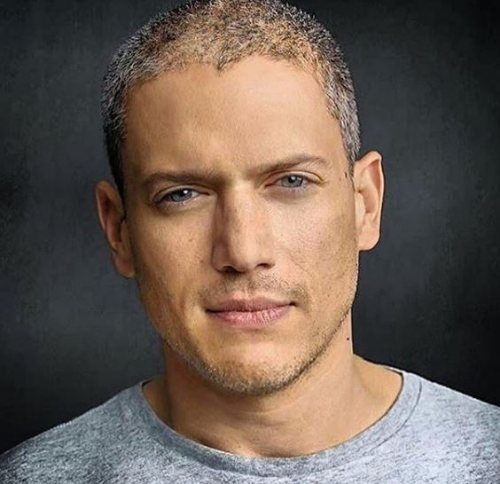 Wentworth Miller Phone Number, Email ID, Address, Fanmail