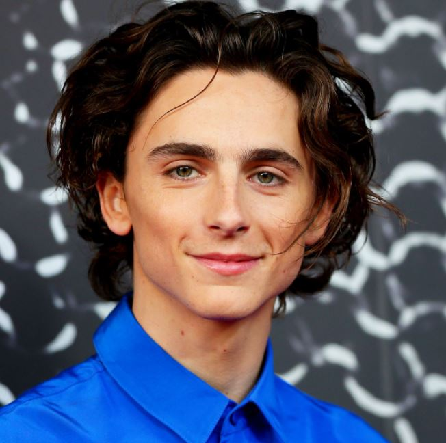 Timothee Chalamet Phone Number, Email ID, Address, Fanmail, Tiktok and More